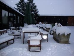 SNOW 2010!