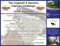 The Cogswell & Harrison February Challenge