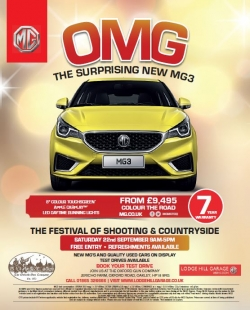 Festival MG3 flyer